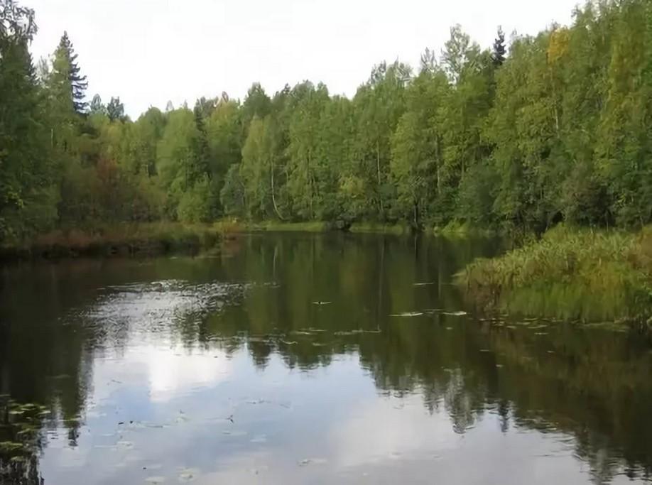 Рыбалка в Архангельской области