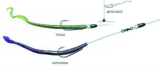 каролину рыболову