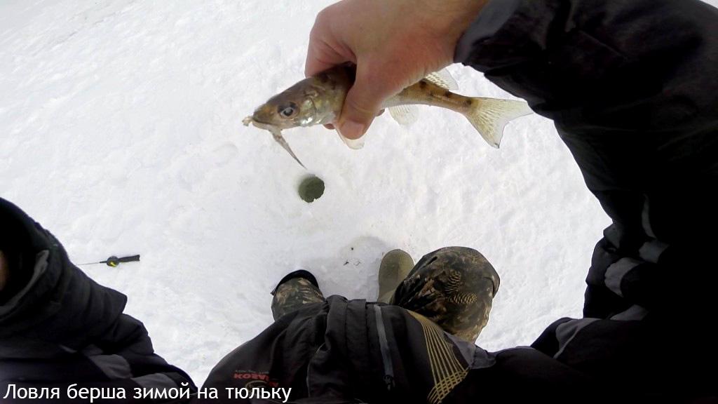 Начало зимы, рыбачим на тюльку.