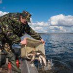 Почему рыбаки носят камуфляж