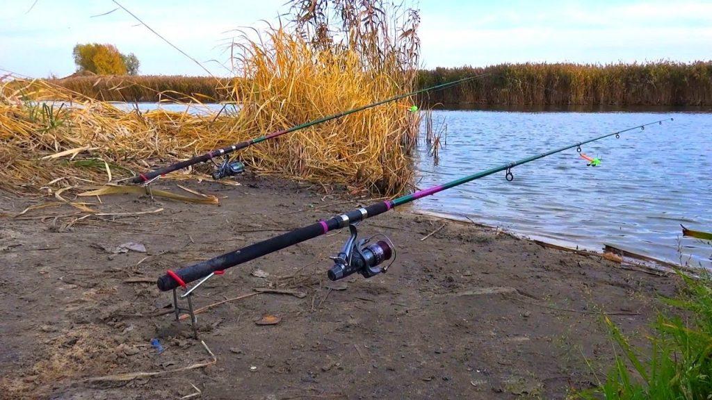 Ловля хищной рыбы. Секреты и тонкости о наживке