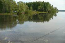 Рыбалка на Можайском водохранилище