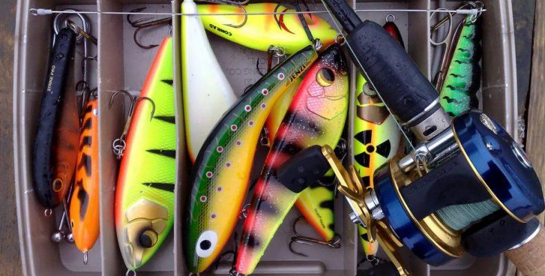 Джеркбэйт — гроза хищных рыб