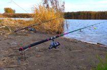 Прогноз для рыбаков на ноябрь